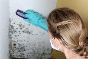 schimmel in badkamer verwijderen