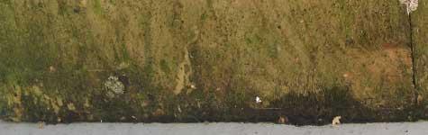 steigerhout behandelen en impregneren tegen vuil, vocht, mos algen